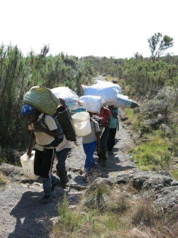 Kilimanjaro Rongai 2013-060