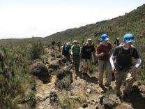 Kilimanjaro Rongai 2013-070