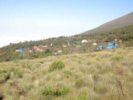 Kilimanjaro Rongai 2013-111