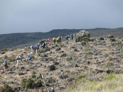 Kilimanjaro Rongai 2013-143