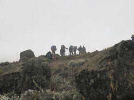 Kilimanjaro Rongai 2013-156