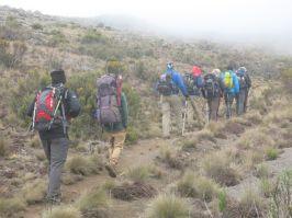 Kilimanjaro Rongai 2013-172