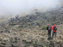 Kilimanjaro Rongai 2013-183