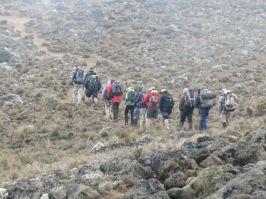 Kilimanjaro Rongai 2013-185