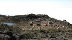 Kilimanjaro Rongai 2013-231