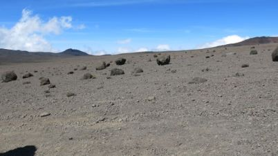 Kilimanjaro Rongai 2013-297