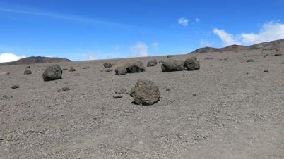 Kilimanjaro Rongai 2013-298
