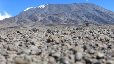 Kilimanjaro Rongai 2013-301