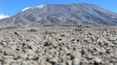 The terrain between Mawenzo and Kibo is classified as Alpine Desert