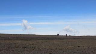 Kilimanjaro Rongai 2013-317