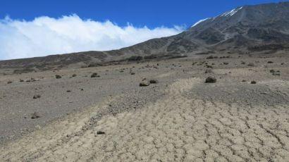 Kilimanjaro Rongai 2013-336